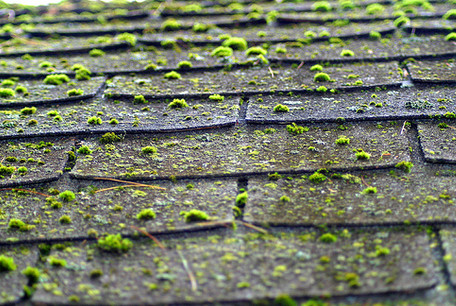 Roof Treatment Is Best In Fall Weather Roof Treatments